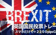 スマホトレーダーの英国国民投票結果